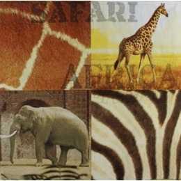 Animais e Peles - Africa (187)