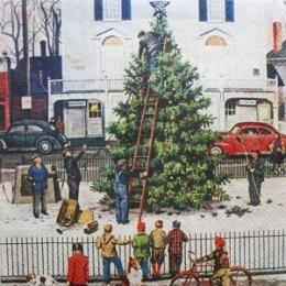 Pessoas Montando Árvore de Natal na Praça (131)