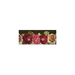 BDAIV688 - Rosas Coloridas