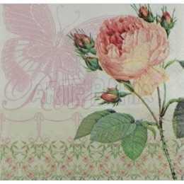 Rosa Fundo Marfim C/Sombra de Borboleta (765)
