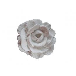 Rosa Frisada Pequena