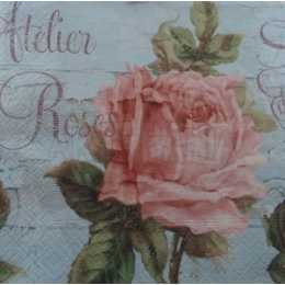 Rosa cor de Rosa  Fundo Azulado - Atelier Roses (702)