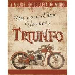 DHPM-231- Motocicleta Vermelha - Triunfo