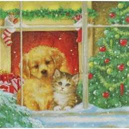 Cachorro e Gato na Janela e Árvore de Natal (270)