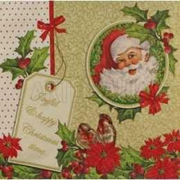 Guardanapo Papai Noel na Moldura Com Barrado de Folhas e Flores Natalinas (248)
