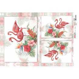 Papel para Decoupage-Opapel 2376 - Flamingos