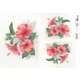 Papel para Decoupage-Opapel 2377 - Flor Hibisco
