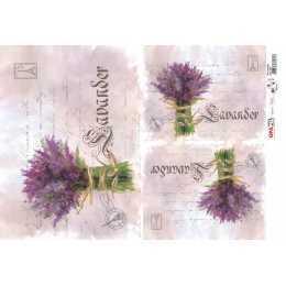 Papel para Decoupage-Opapel 2378 - Flor Lavanda