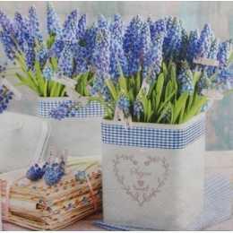 Alfazema no Vaso Branco (50)