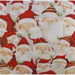 Guardanapo Rostinho de Papai Noel (462)
