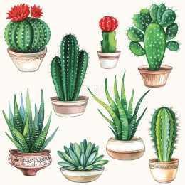 Guardanapo Cactus em Vasos, fundo Branco (103)