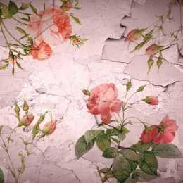Folha para Scrapbook Simples LSCE055 - Rosas na Parede Rústica