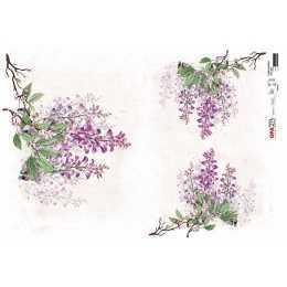 Papel para Decoupage-Opapel 2813-Flor Glicínias