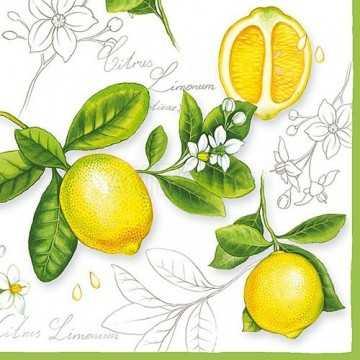 Guardanapo Limão Siciliano...